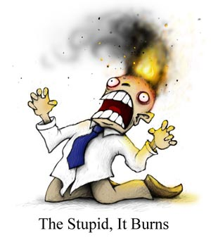 """The Stupid, It Burns"""